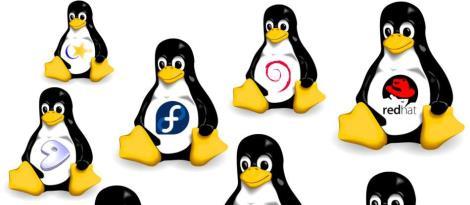 Linux é tema de curso na Faculdade IENH