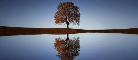 Programa Avançado de Mindfulness com inscrições abertas na Faculdade IENH