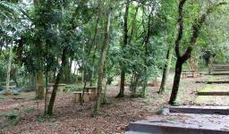 Morrinho - Área de preservação ambiental